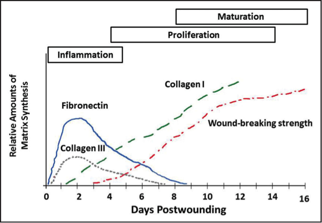 acute wounds graph